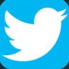 twitter logo piccolo